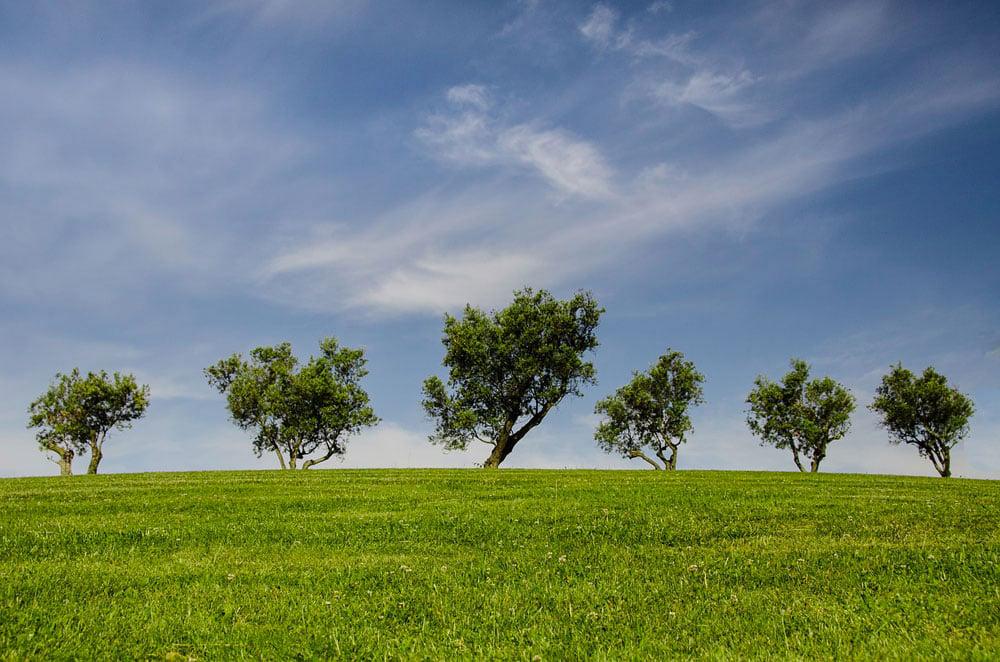 Giornata mondiale dell'ambiente: come essere più green nei viaggi