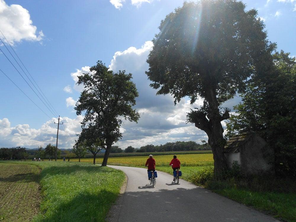 Da Linz a Vienna in bicicletta