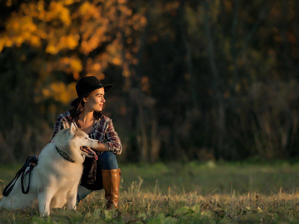 viaggiare con il cane consigli